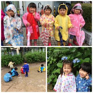 雨の日散歩3.jpg